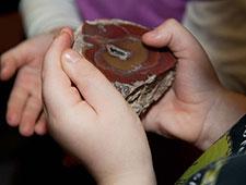 Kind umfasst Fossil